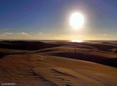 Pismo Dunes Runner