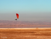 gliders-09