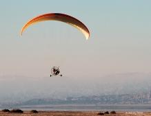 gliders-11