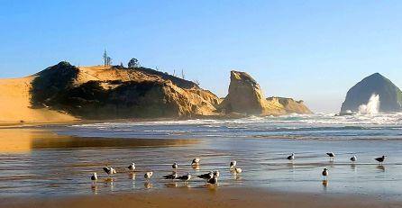 Oregon Coast small