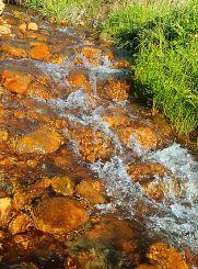 Oregon coast stream small