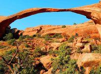 Arches 30 small