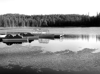 Diamond Lake b&w